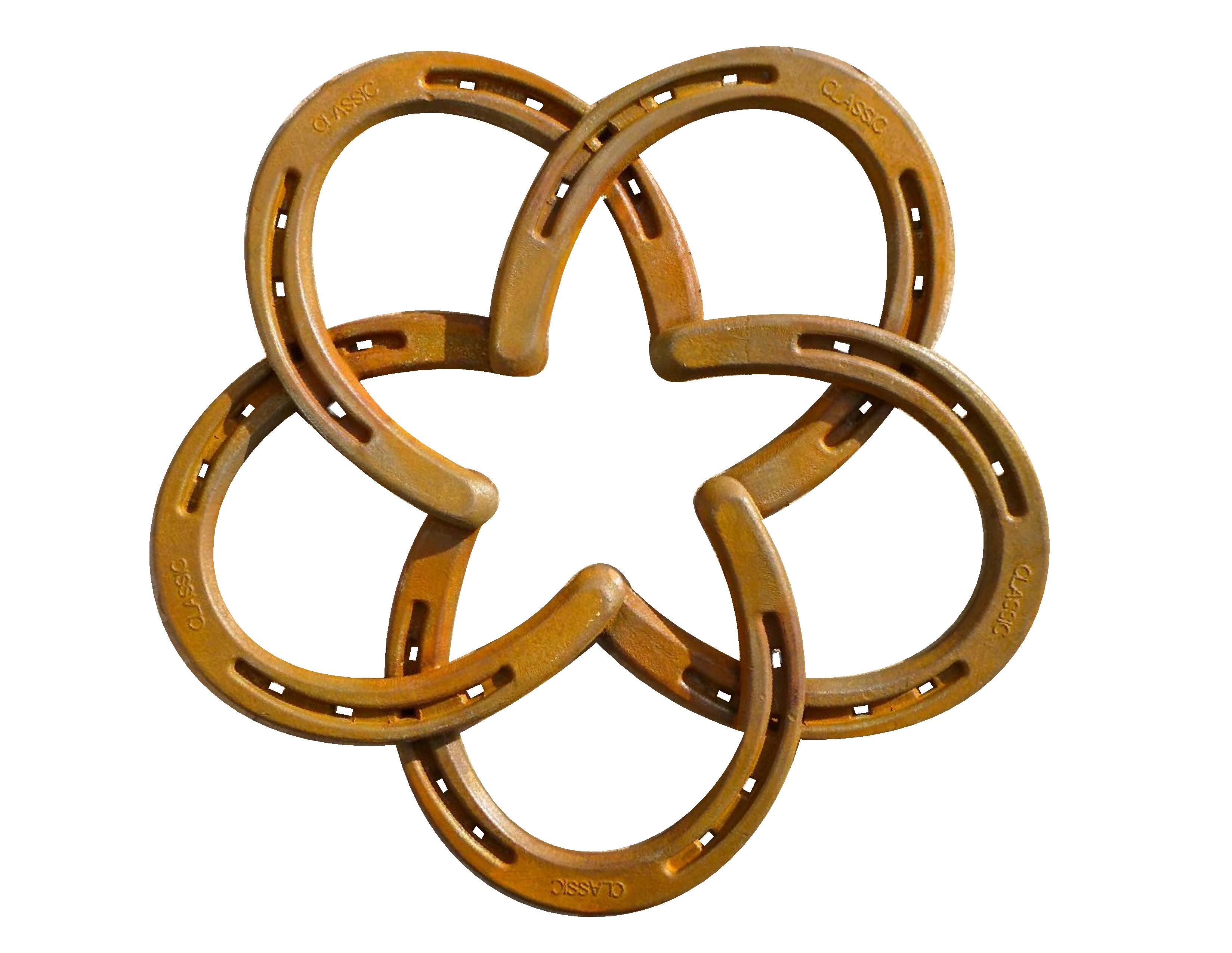 Outdoor Living Gifts Horseshoe Star Decorative Wall Mounted
