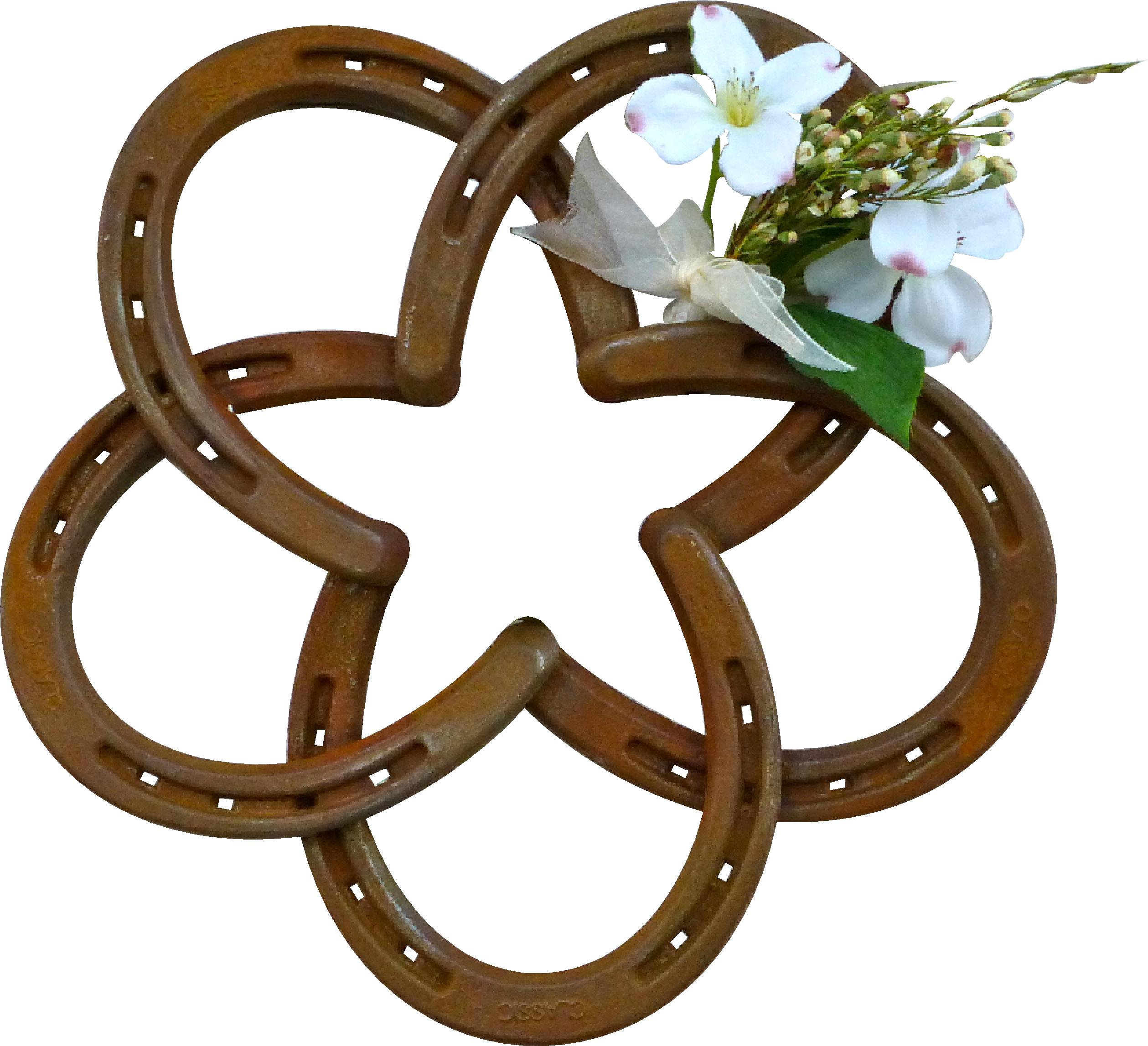 horseshoe star picture frame cowboy wedding floral railroadware