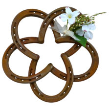 horseshoe-Star-Floral-1
